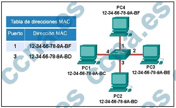 p9-c5-v5