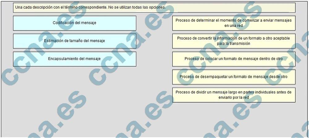 ccna1 v5.1 capitulo 3 examen