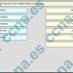 CCNA1 v6.0 Capítulo 7 Examen Español 2017