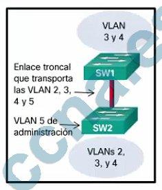 p24-f-c-m2-v6.jpg
