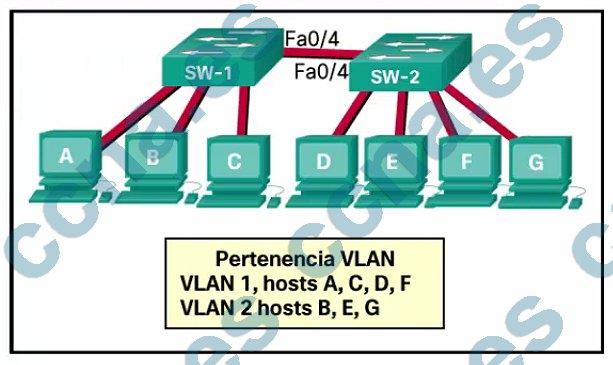p46-f-c-m2-v6.jpg