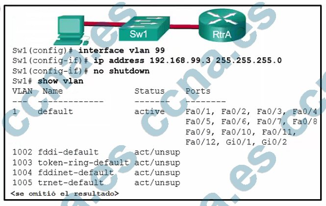 p48-f-c-m2-v6.jpg