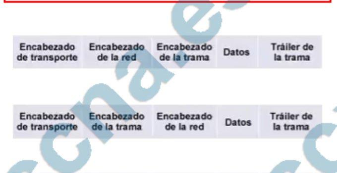 CCNA2 v6 Examen Preliminar Español