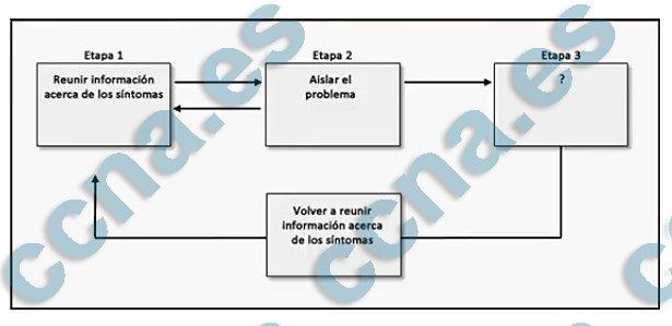 ccna4 v6 capitulo 8 examen
